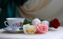 Roses Tea Wallpapers Pictures Photos Images 254