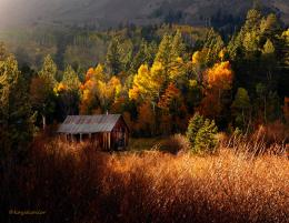 Cabin in the woods by kayaksailor on DeviantArt 632