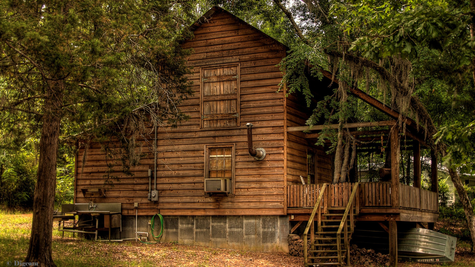 Cabin In The Forest1773627 1905