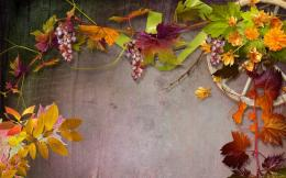 Download Autumn wall collage wallpaper in 3DAbstract wallpapers 1581