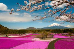 Download wallpaper Mount Fuji, Located on the island of Honshu, the 1587