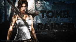 Tomb Raider Origins, Tomb Raider RebootAmazon Pre order Exclusive 1076