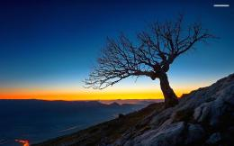Mountains Tree Shadow Sunset wallpapers | Mountains Tree Shadow Sunset 380