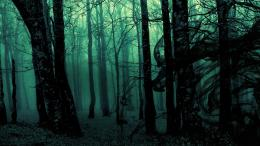 Dark ghost gothic wood trees fantasy evil horror wallpaper | 1920x1080 1505