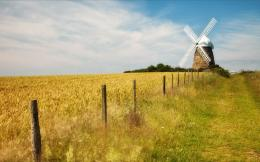 field next to the white windmill photography wallpaper Wallpapers 1957