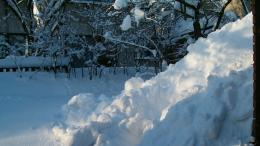 Snowy backyard : Desktop and mobile wallpaper : Wallippo 1367