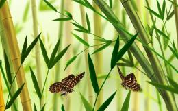 Butterfly and bamboo vector wallpaper in Flowersplants wallpapers 1890