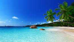 tropical paradise beach ocean sea palm summer coast wallpaper 1450
