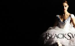 Black Swan 1920x1200 Wallpapers, 1920x1200 Wallpapers & Pictures Free 236