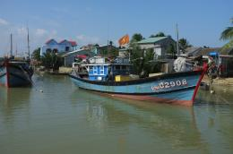 Near Hoi An copyright Matthew Atkin 11 1564
