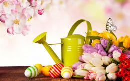 colorful tulips cherry blossoms butterfly eggs watering can Easter 1435