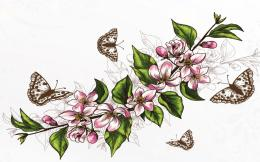 1440x900 Cherry Blossoms & Butterflies desktop PC and Mac wallpaper 1818