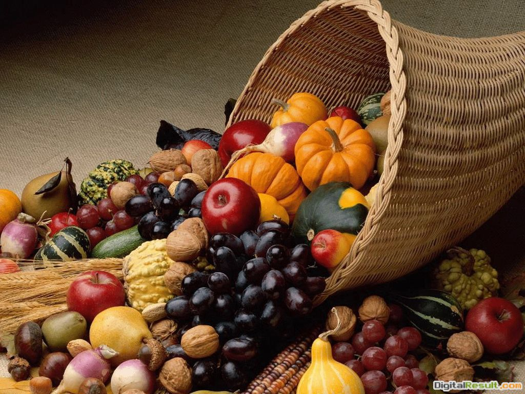 Free Thanksgiving Wallpapers, Screensavers and Pictures Download for 939