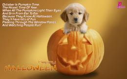 Halloween Wallpaper Free Download with Children\'s Poems | Poetry 1038