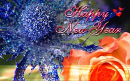 Happy New Year Celebration Wallpapers 2015 Wallpaper with 1920x1201 555