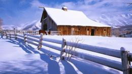 Horse barn in winter wallpaper 1438