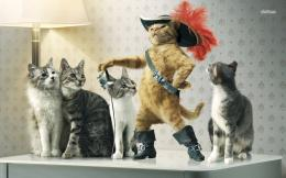 Mighty cat with boots and hat wallpaperArtistic wallpapers#45236 1058