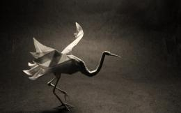 origami, bird, crane, art, photo, pattern, concept, wallpaper 694