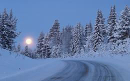 Snowy Forest Road Moon Night wallpapers | Snowy Forest Road Moon Night 1577