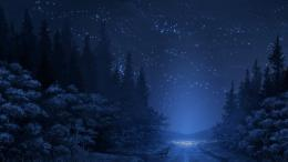 download night sky in the forest wallpaper Car Pictures 1213