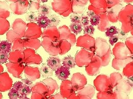 PatternsFlower PaintingsFlower Backgrounds 1600*1200 Wallpaper 1364