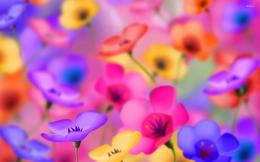 Pansies wallpaperArtistic wallpapers#16269 1337