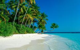 The Cook Islands truly are a tropical paradiseClick the photo for 582