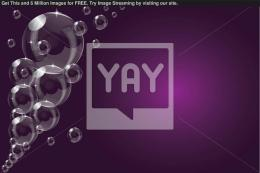 Royalty Free Vector of A Purple Transparent Soap Bubble Background 467