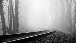 tracks railroad black white trees forest fog haze wallpaper background 969