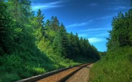 Railway track green nature wallpaper | 2560x1600 | 6729 | WallpaperUP 862