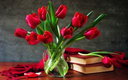 Red tulips Wallpaper #9659 1171