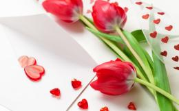 Hearts red tulips Wallpapers Pictures Photos Images 909