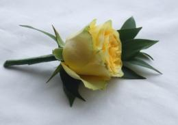 single yellow rose flowerDriverLayer Search Engine 1605