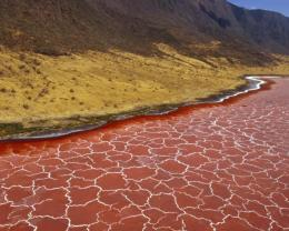 soda formation in lake natron tanzania wallpaper in nature wallpapers 302