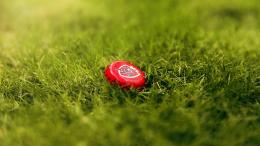 Jupiler Bottle Caps On The Grass Hd Wallpaper | Wallpaper List 1534