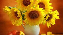 1366x768 Yellow Flowers in Vase Desktop Wallpaper Background Desktop 492