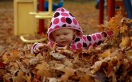 Pure Childish Playing With Autumn Leaves Hd Wallpaper | Wallpaper List 1373