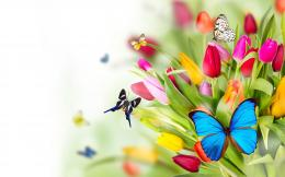 53 Flowers and Butterflies Pictures, Images, Wallpapers | Flower 1588
