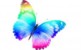 Butterfly most beautiful desktop wallpaper | HD Wallpapers Rocks 404