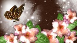 Wonderful Butterfly wallpaper 1155