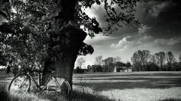 Bicycle In The Country In Black White Hd Wallpaper | Wallpaper List 1964
