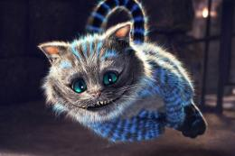 Download Cats Cheshire Cat Hd N Backgrounds Wallpaper | Full HD 1502