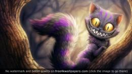 Cheshire Cat 3462 HD wallpaper 647
