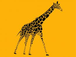 Giraffe Illustration 1468