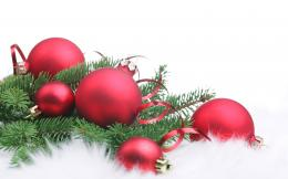 Red Christmas balls and pine picturesfree pictures 1327