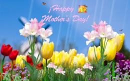 Happy Mothers Day desktop HD Wallpaper 446