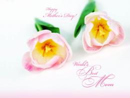 Top 10 Happy Mother\'s Day Wallpapers 1390