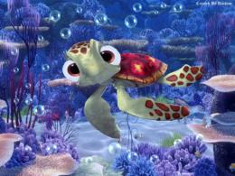 Finding Nemo Little Turtle Wallpaper #3764 Wallpaper | HDwallsize com 187
