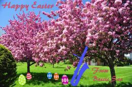 greeting, Happy Easter, cherry blossoms, bass saxophone, Easter eggs 491
