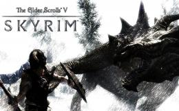 The Elder Scrolls V Skyrim Game HD Wallpaper 011680x1050 wallpaper 1060